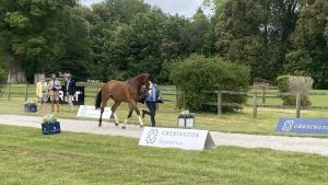 Bicton Horse Trials first trot-up: Michael Owen and Bradeley Law