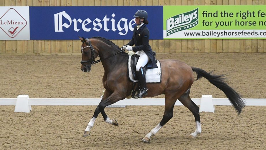 Nathalie Kayal and DHI Cleverboy winning the Superflex inter I at the Winter Dressage Championships