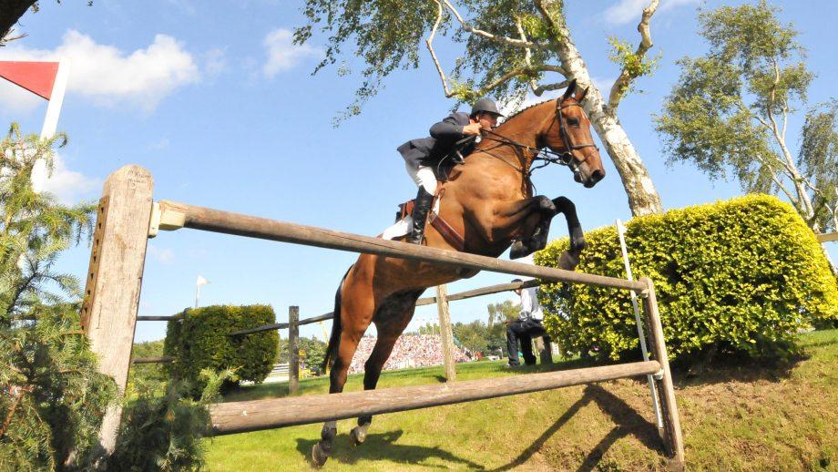William Funnell and Cortaflex Mondriaan win the 2008 Hickstead Derby