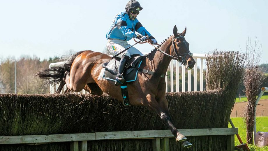 point-to-point champions