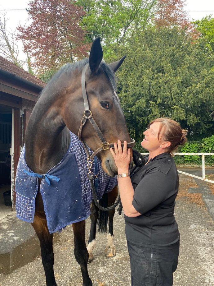 Lancashire Police horse