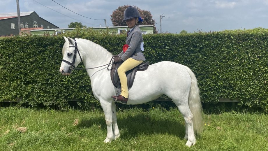 Bluebell Beechey and Crumpwell Finella now head to RIHS for the Pretty Polly heritage first ridden