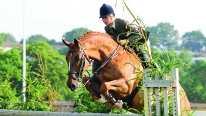 Louise Bell and Cruise Control in the lightweight working hunter champions at RIHS 2008