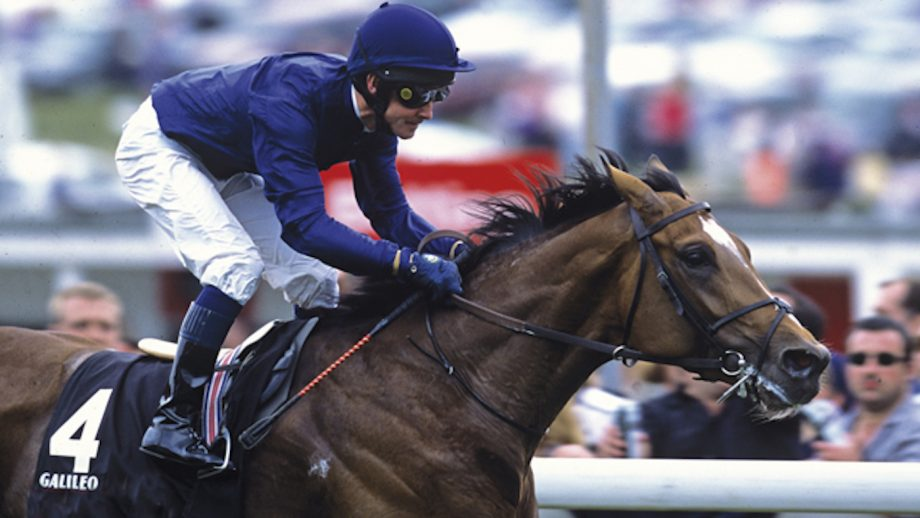 Galileo, pictured with Mick Kinane on their way to winning the 2001 Derby at Epsom, has been put down age 23.