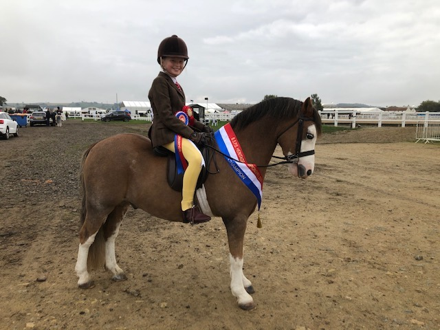 Holly Dilks is Royal International-bound with her first ridden pony Rookery Boomerang