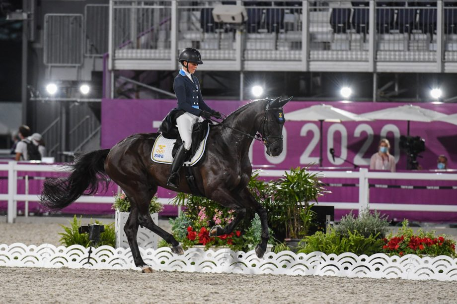 Olympic eventing dressage