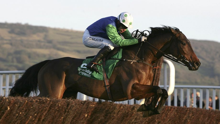 CHELTENHAM, UNITED KINGDOM - NOVEMBER 12: Our Vic ridden by Timmy Murphy jumps the final fence to win the Paddy Power Gold Cup during the Cheltenham Race meeting at Cheltenham Racecourse on November 12, 2005 in Cheltenham, England. (Photo by Tom Shaw/Getty Images)