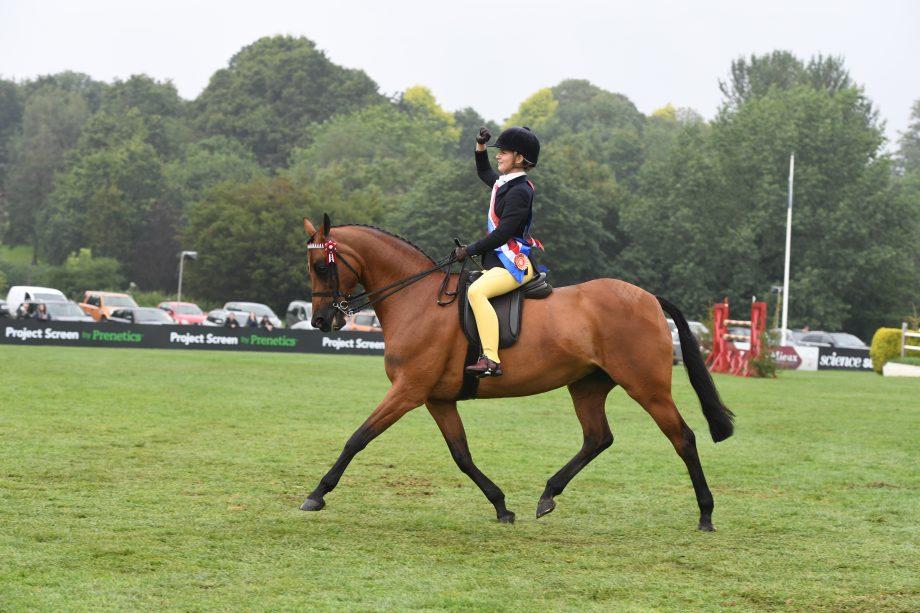 Mia Donaldson riding show pony Wilderness Early Bird