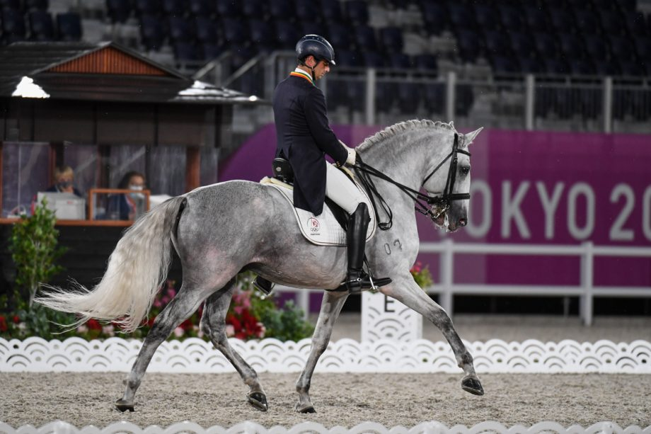 olympic dressage horse of the day: Lusitano stallion Fogoso at the Tokyo Olympics.
