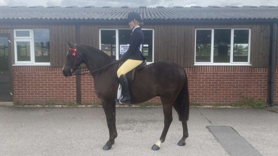 Sophie-Anne Cartmell's show hunter type Stanley Grange overcomes EMS and laminitis to qualify for the Royal International