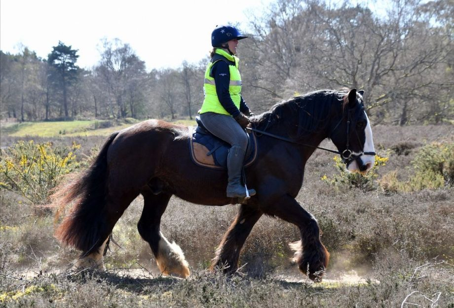 horse riders relay for charity