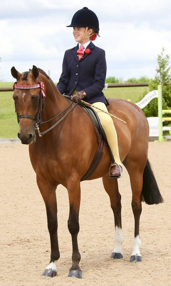 Chloe Chapman and her 11-year-old show pony Wycroft Da Vinci are heading to the 2021 Royal International Horse Show