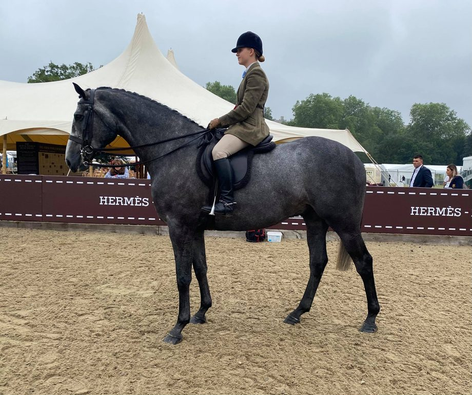 Alice Homer and Bloomfield President land a 5-strong four-year-old hunter class