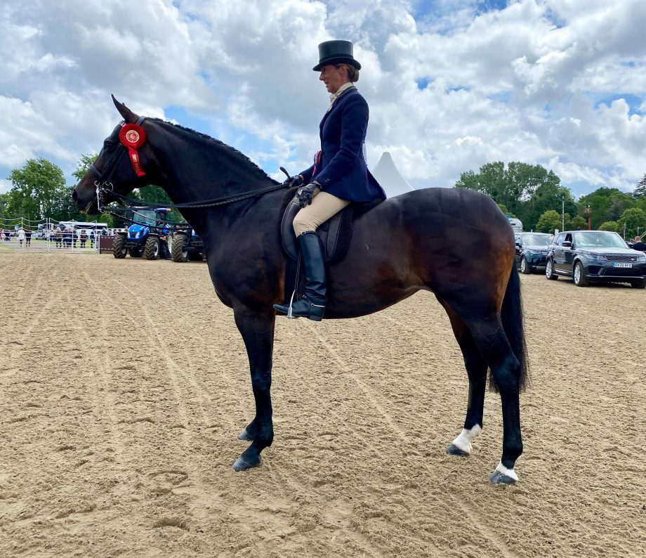 Jayne Ross and Casino III are crowned riding horse champions at the Royal Windsor Horse Show
