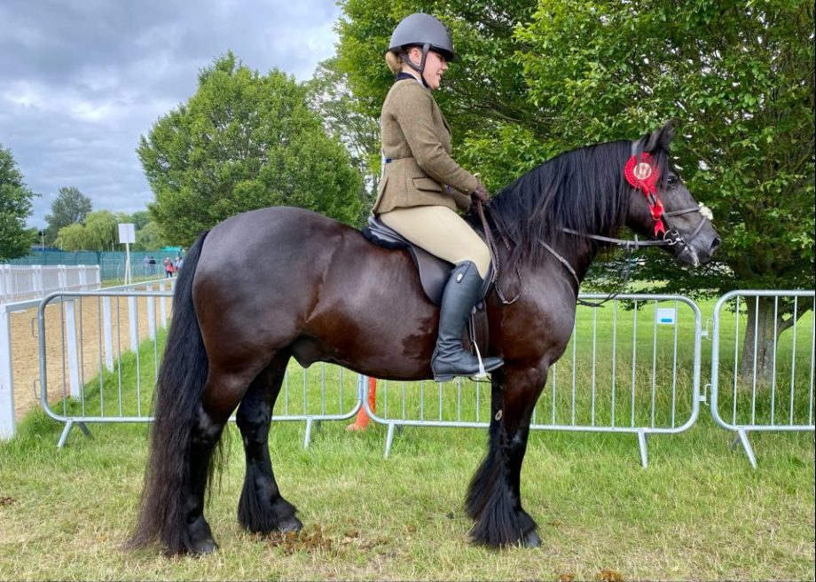 Greenholme Falcon and Chantelle Chapman score the m&m working hunter pony title at the 2021 Royal Windsor Horse Show