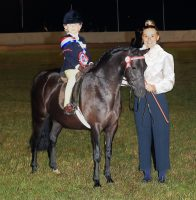 Equifest showing results: Barkway Blackbery stands supreme