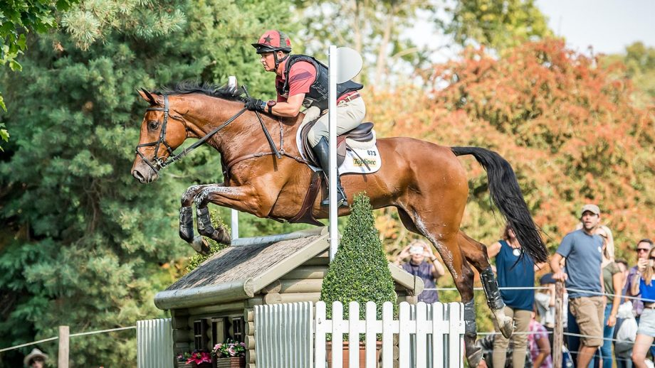 Matt Heath's five-star event horse The Lion has retired at the age of 19