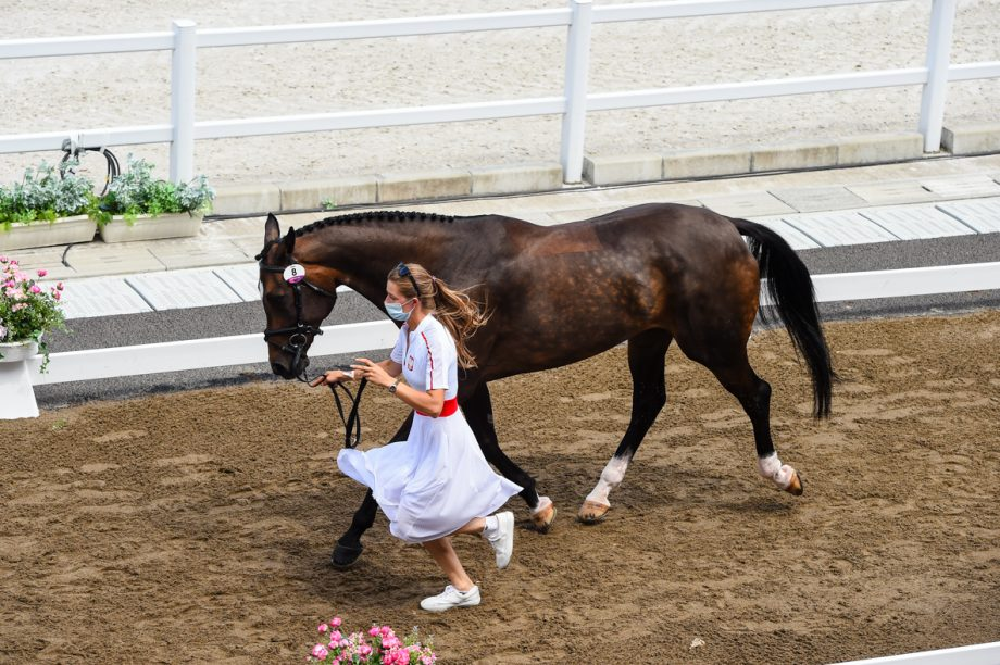 Olympic eventing final trot-up: Joanna Pawlak and Fantastic Frieda