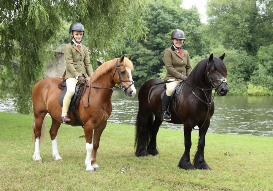 Bobby and Chantelle Chapman are heading to HOYS with their home-produced ponies