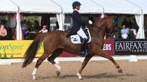 Anna Ross and Newton Domino competing at the National Dressage Championships
