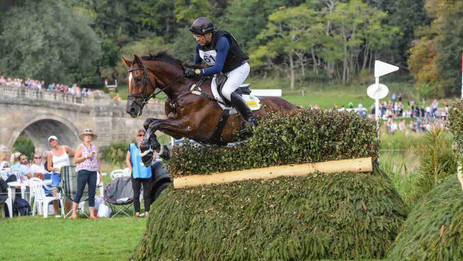 Blenheim Horse Trials cross-country statistics 2021
