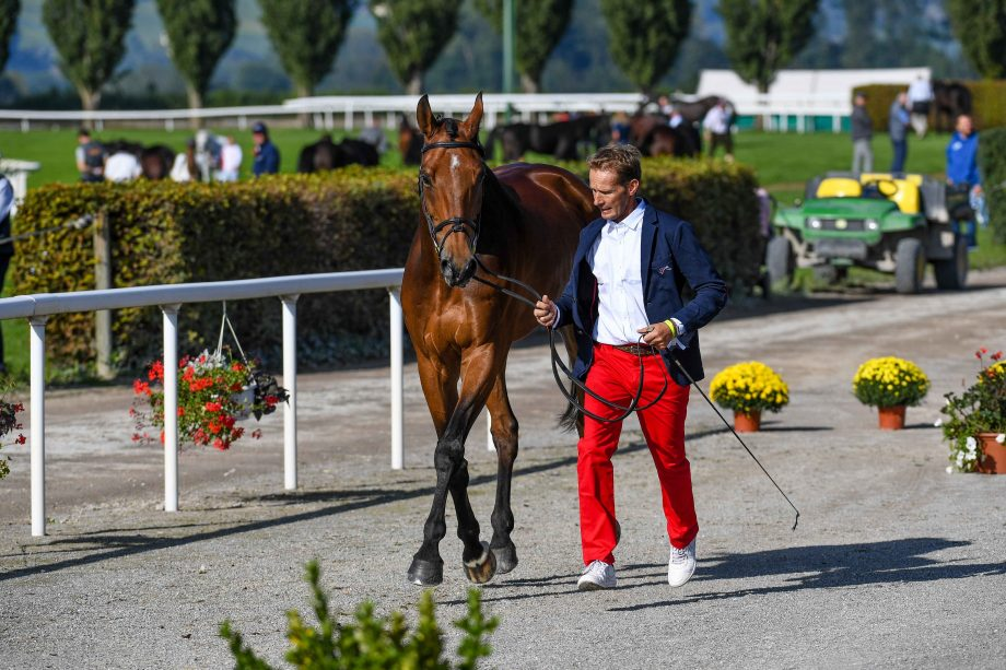 European Eventing Championships first trot-up: Jean Lou Bigot and Utrillo Du Halage