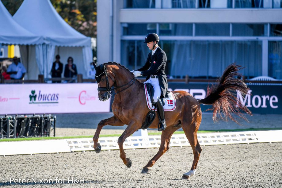 Daniel Bachmann Andersen (DEN) riding Marshall-Bell during the Grand Prix - Team Competition of the Dressage European Championship held at Hagen A.T.W near Osnabrück in Germany between the 7-12th September 2021