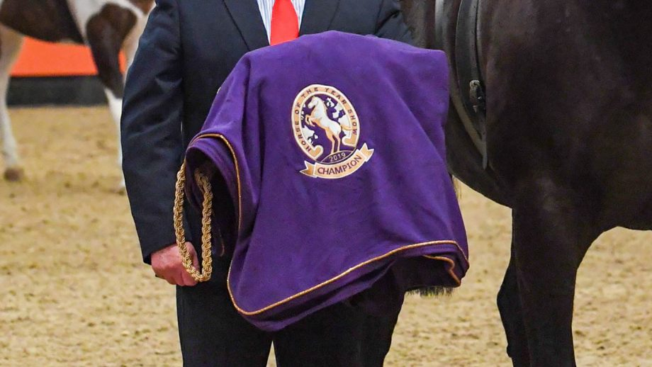 HOYS tickets Anyone competing at Horse of the Year Show wants to take home a HOYS winners' rug