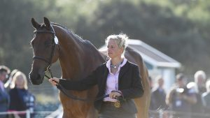 Blenheim Horse Trials dressage: Izzy Taylor and Springpower have taken an early lead