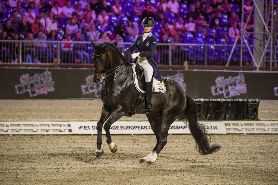 Buriel K.H competing at the 2021 European Dressage Championships with Juliette Ramel