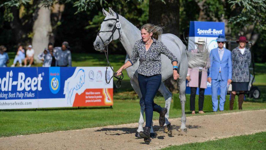 Blenheim Horse Trials first trot-up