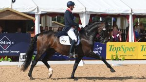Gareth Hughes riding KK Dominant to win the grand prix at the National Dressage Championships