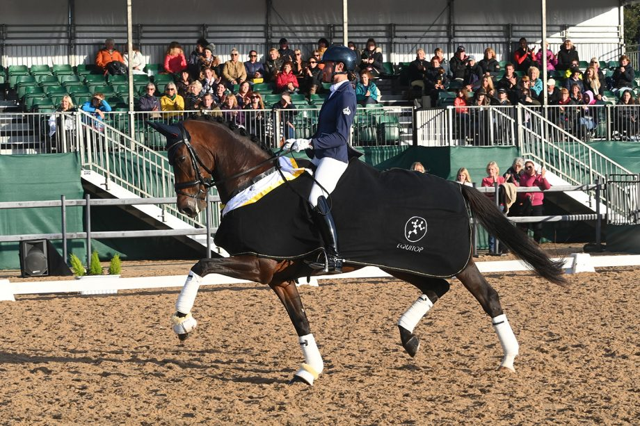 Koko II and Sarah Wilkinson win the Elementary Gold at the National Dressage Championships