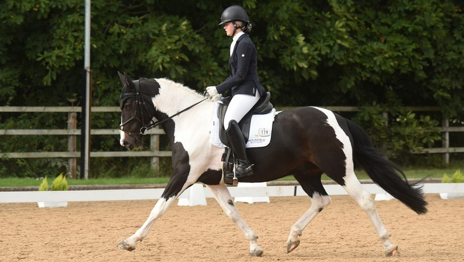 Emma Mounfield on Colin II at the National Dressage Championships