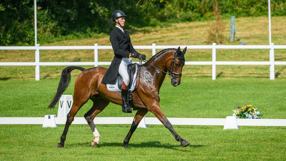 Bicton Horse Trials dressage: Will Rawlin