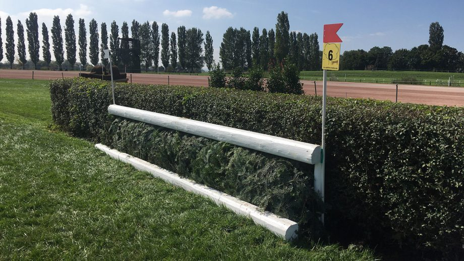 European Eventing Championships cross-country course: fence 6