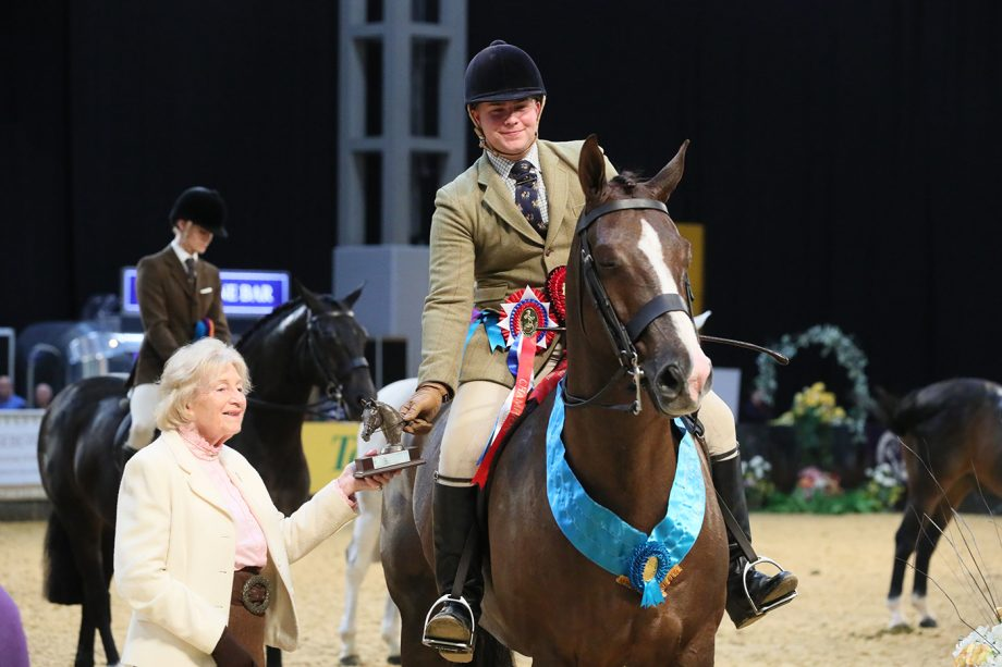 Harry Moore and Be Smart Rotherwood Stud Intermediate Show Hunter of the Year at HOYS 2021