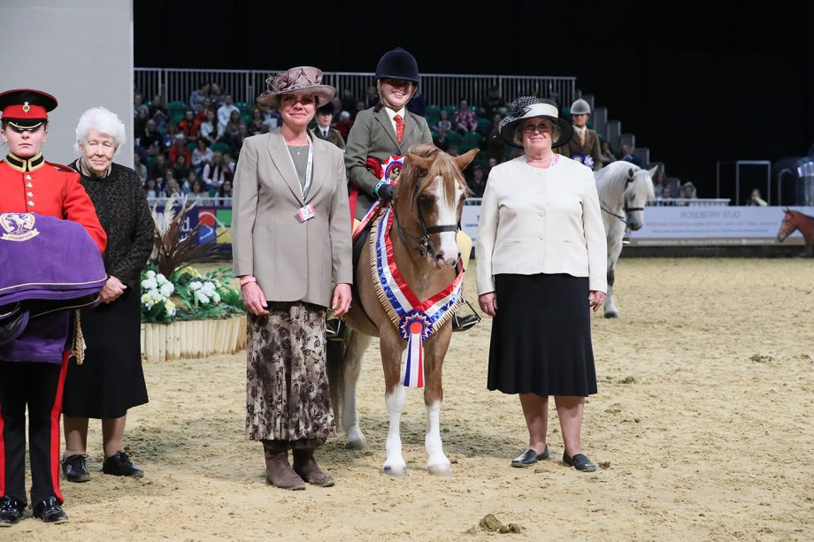 Lexi Brash and Wellbank Gabriel are crowned junior M&M champions at HOYS 2021