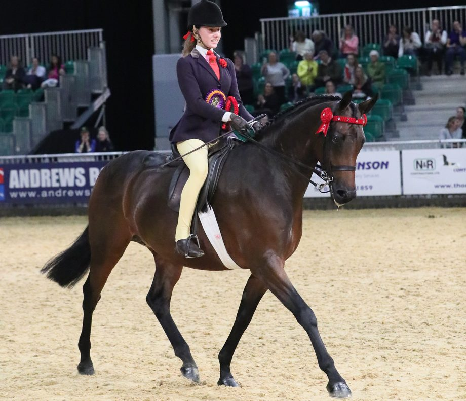 Amelia Lockhart and Absolutely Classic scoop the part-bred pony title at HOYS 2021