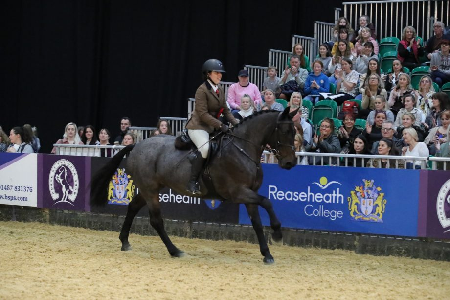HOYS 153cm working hunter pony of the year winners, Glenmore Miss Mirah (Marley) and Emily Mcpolin