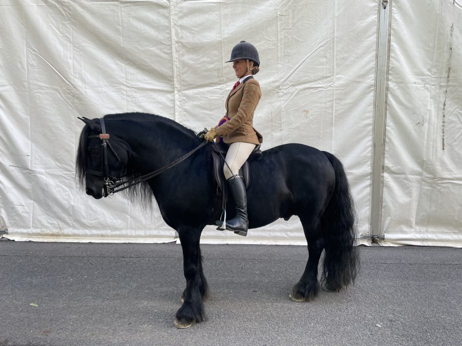 Clare Fitch and Wildhoeve Okidoki win the Fell final of the year at the 2021 Horse of the Year Show