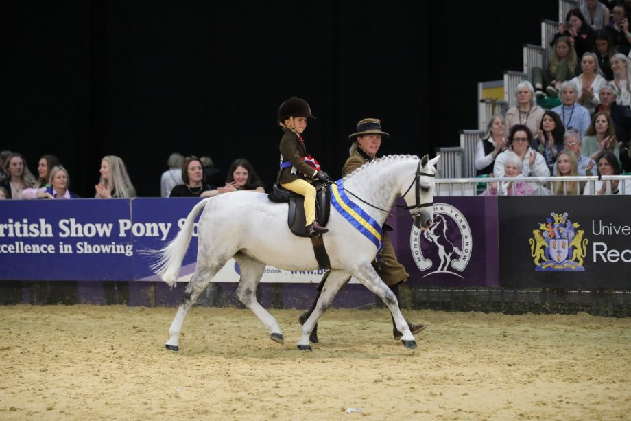 Grayson Brady Brooke and Preistwood Roc Star - The Gribbin Family Lead Rein Pony of Hunter at HOYS 2021