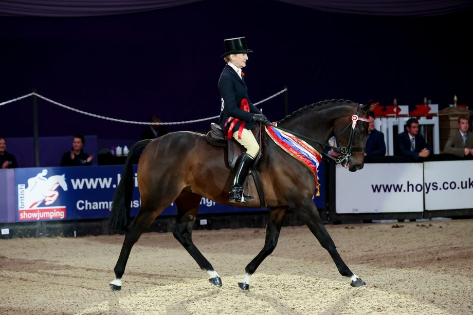 Minella Rebellion wins the R2R final at HOYS