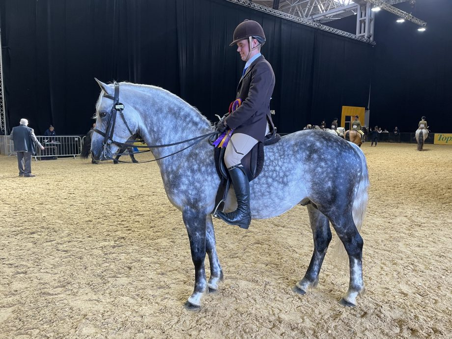 Harrison Taylor and Skellorn Deja Vu win the Connemara final of the year at the 2021 Horse of the Year Show