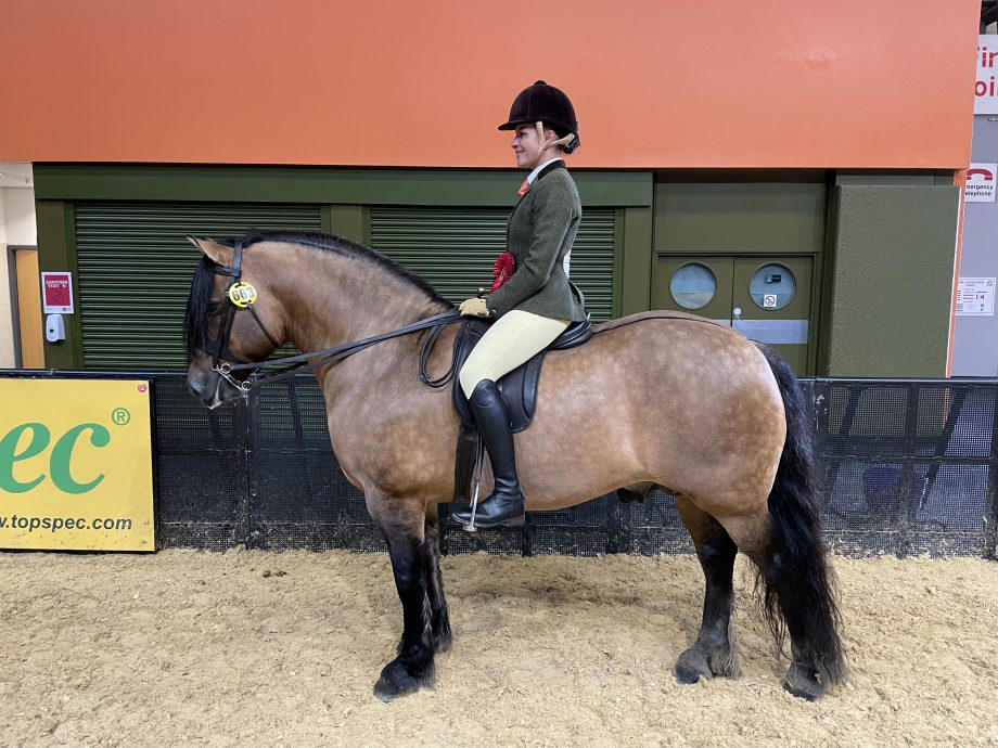 Tracey Milward and Lochlands Gypsy Baron win the Highland final of the year at the 2021 Horse of the Year Show