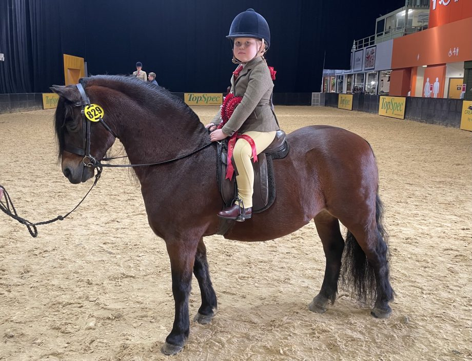 Willow West and Shilstone Rocks Thunderbird won the M&M Mini Pony of the Year championship at the HOYS 2021
