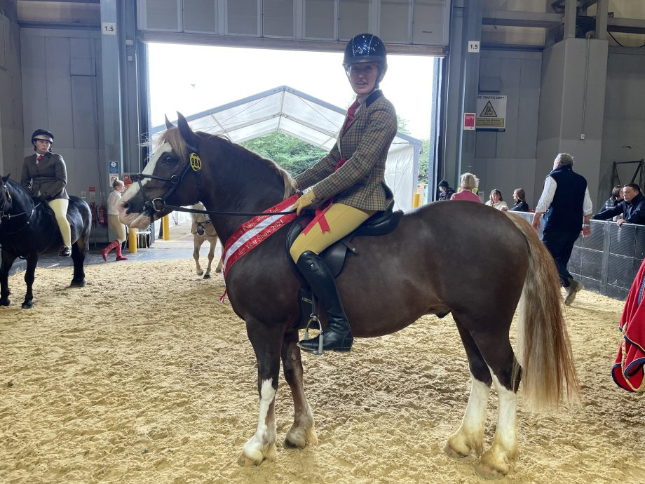 HOYS 138cm M&M WHP: Katy Stock and Rushfield Oh So Smart won the M&M working hunter pony 133cm title at HOYS 2021
