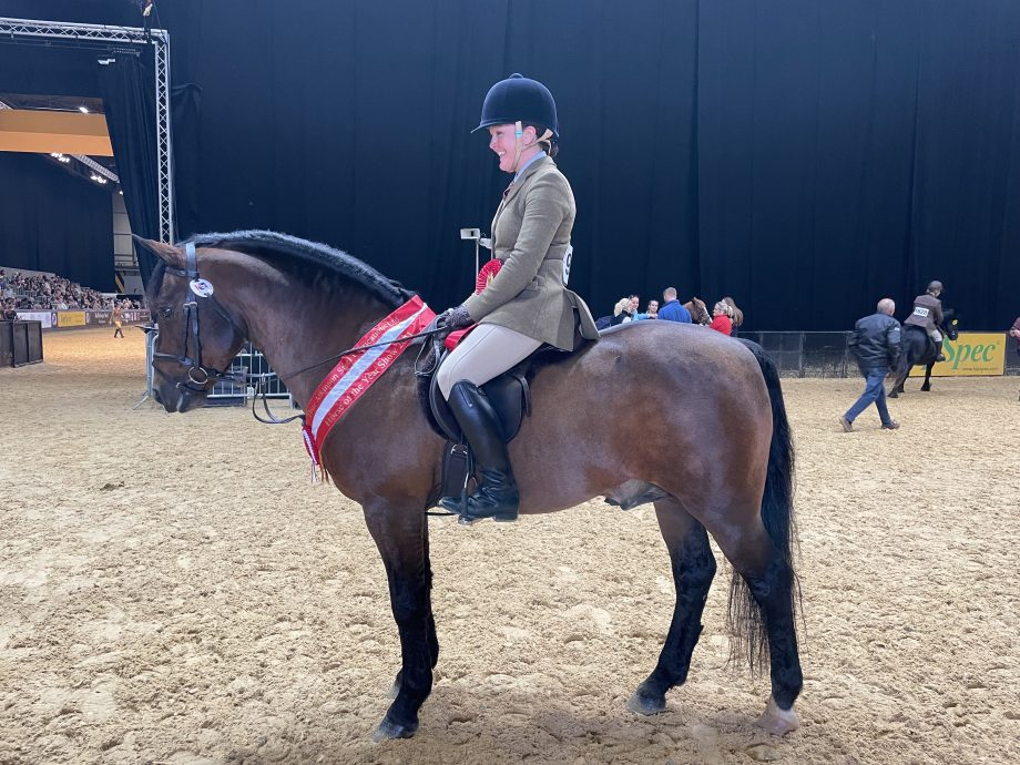 Laura Avery and Willoway Free Spirit won the M&M working hunter 143cm at the HOYS 2021
