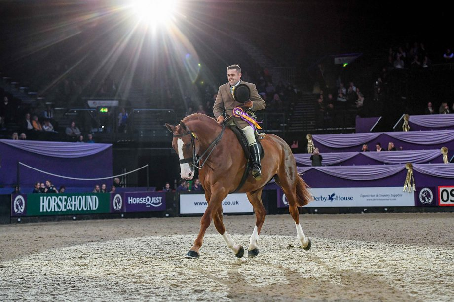 Dublin Street Fighter and Matthew Ainsworth win the heavyweight show hunter of the year final at HOYS 2021