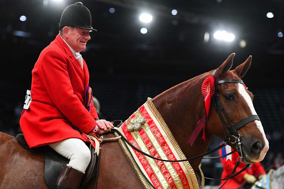 Lord Alexander and Stephen Norris are maxi cob of the year champions at HOYS 2021